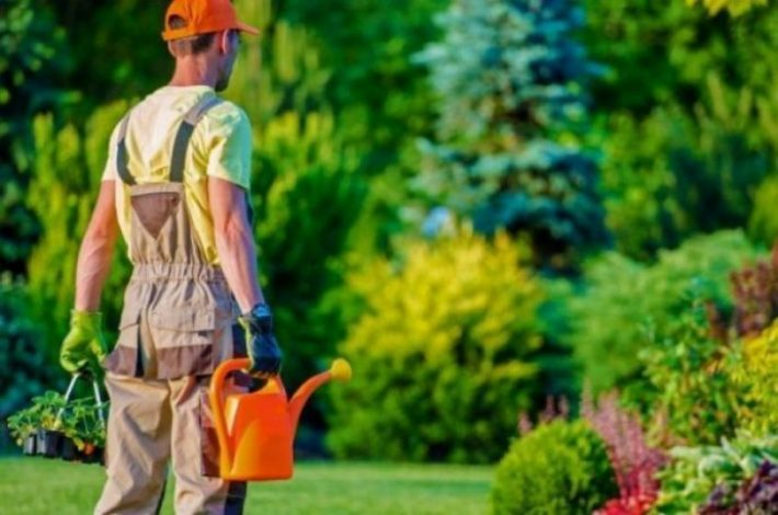 Trucs om je tuin groter te laten lijken