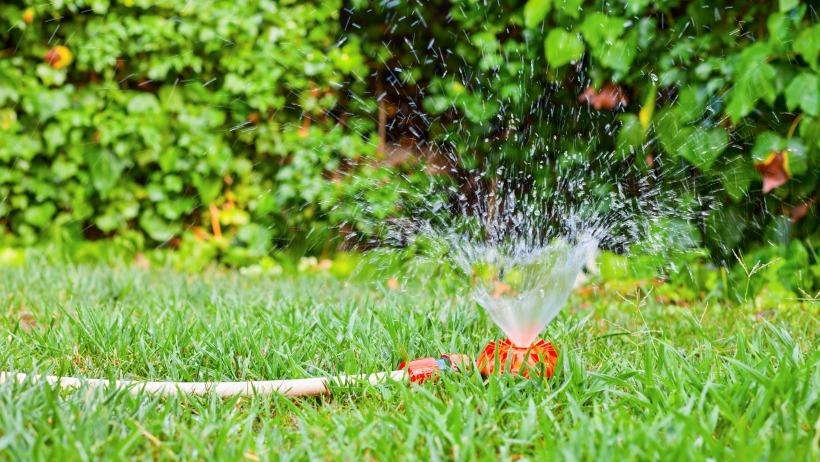 Hoe moet je de tuin sproeien?
