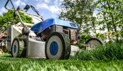 Dit kun je allemaal doen met je gemaaide gras