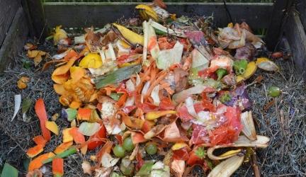 Zelf compost maken: Dit moet je weten